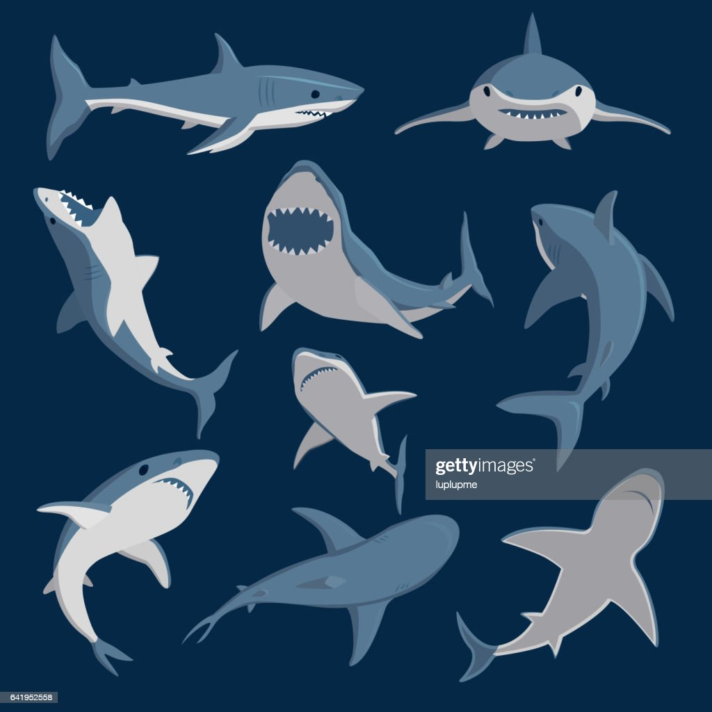 Vector shark comic style character wild fish set