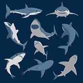 Vector shark comic style character wild fish set