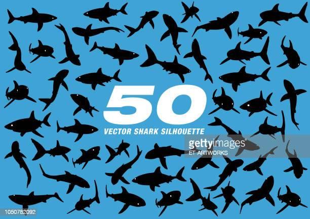 50 vector shark silhouette - great white shark stock illustrations, clip art, cartoons, & icons
