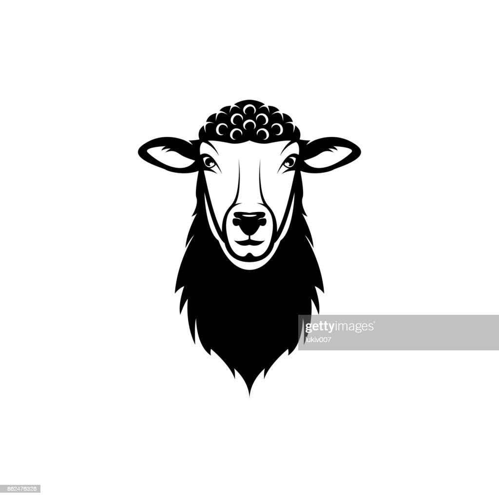 Vector Sheep Head Face For Retro S Emblems Badges Labels Template ...