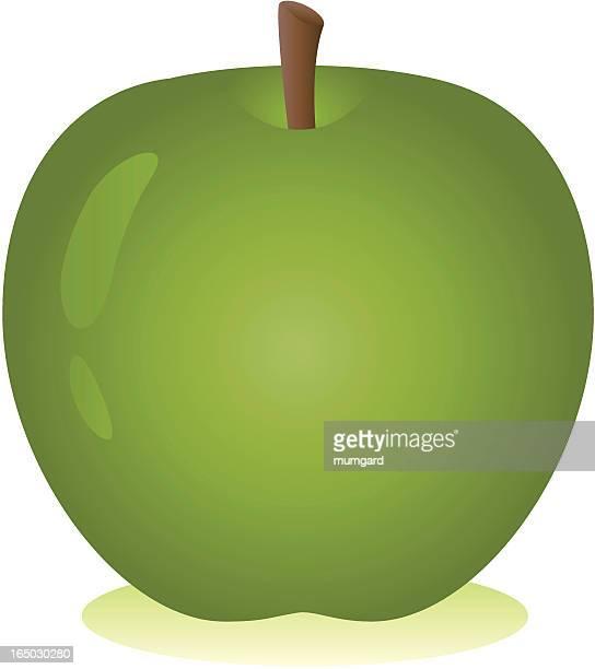 ベクトル輝くグリーンアップル、コウノトリ