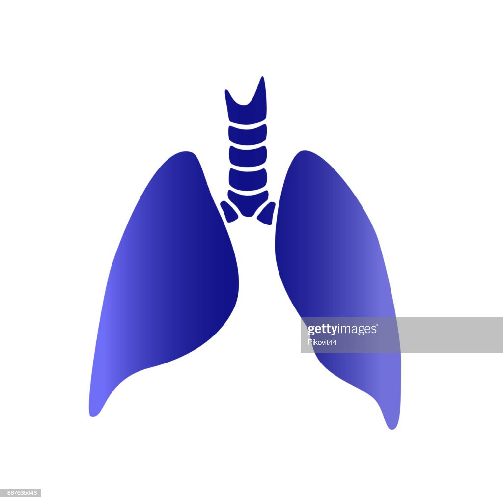 Vector Silhouette Medical Illustration Of Human Body Organ Lungs
