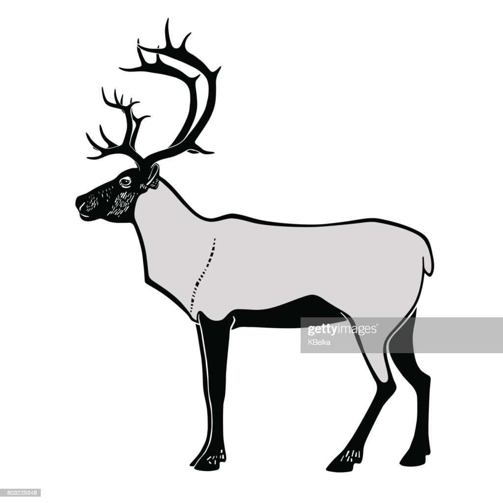 vector silhouette of deer on white background