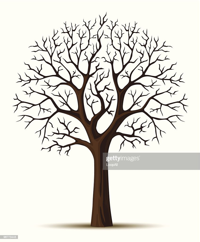 vector silhouette of tree branches cron