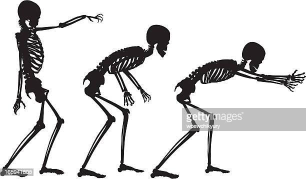 Vektor-Skelett in Bewegung
