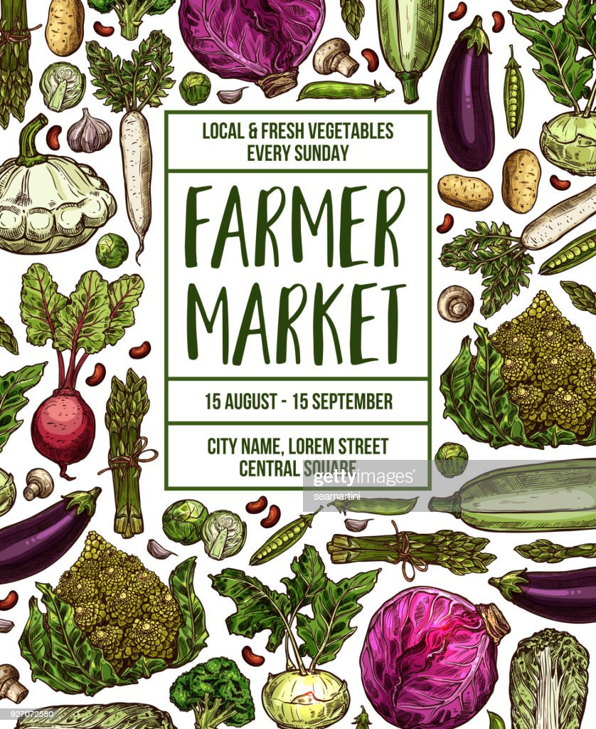 Vector sketch poster for vegetables farm market