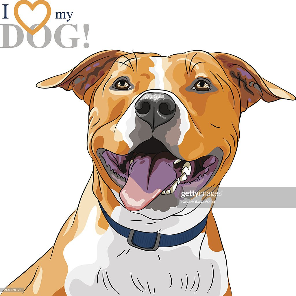 vector sketch smiling dog American Staffordshire Terrier breed