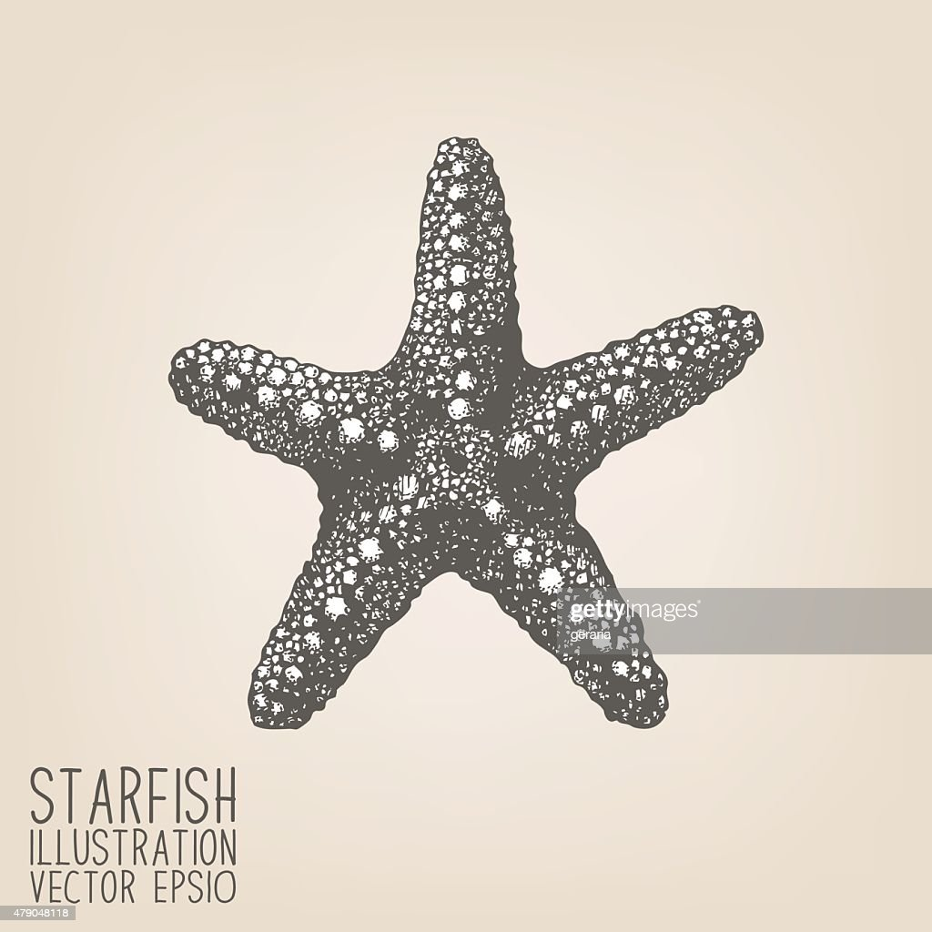 Vector sketch with hand drawn sea star