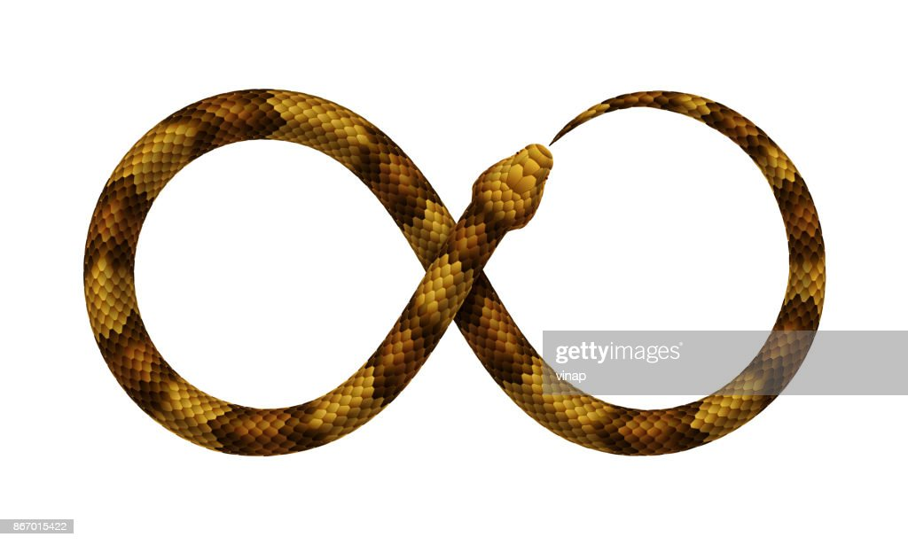Vector Snake bites it's tail in the form of a sign of infinity.