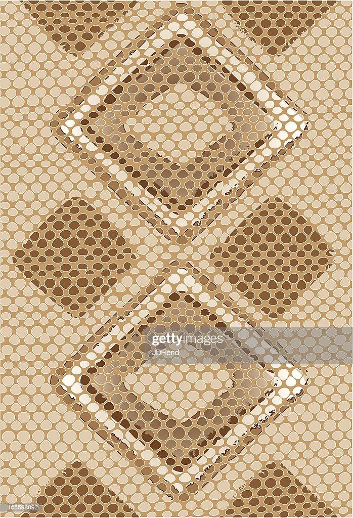Vector Snake Skin Background