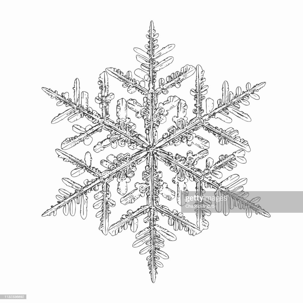 Vector snowflake isolated on white background