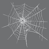 Vector Spider's Web on Dark Gray Background