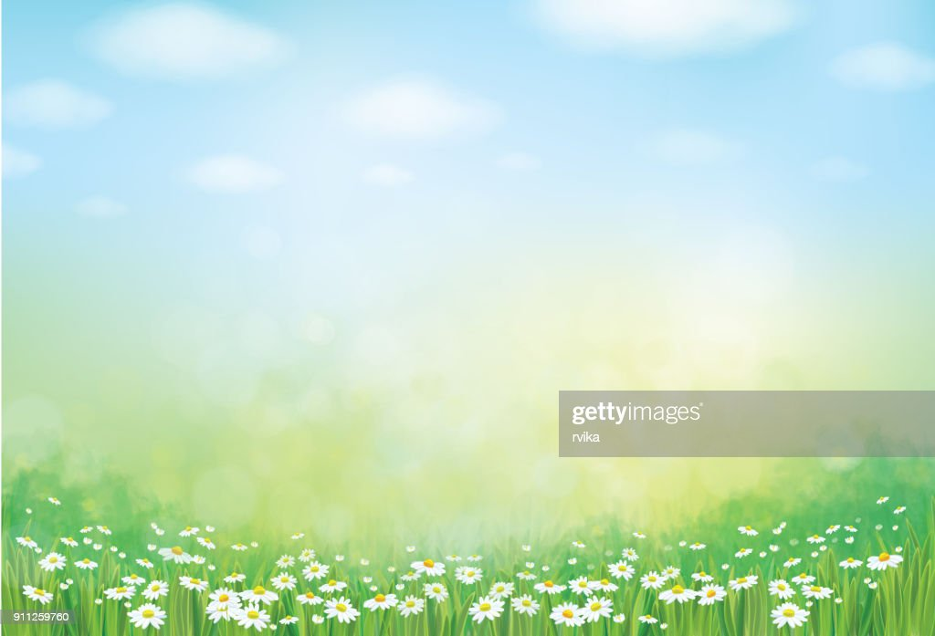 Vector summer nature  background.