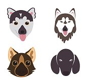 Vector - The big vector set of dog breeds  icons
