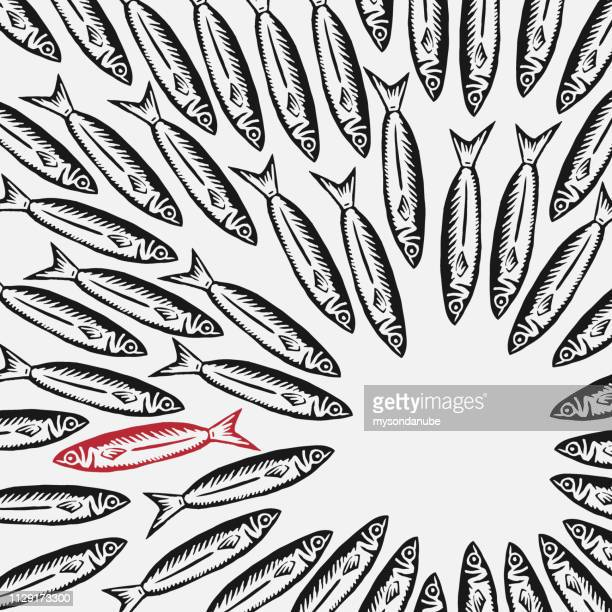 illustrazioni stock, clip art, cartoni animati e icone di tendenza di vector think outside the box or behave individual concept background - sardine