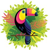 Vector Toucan on a floral background
