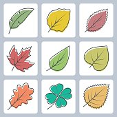 Vector tree leaves icons set