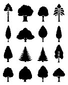 Vector  trees icons