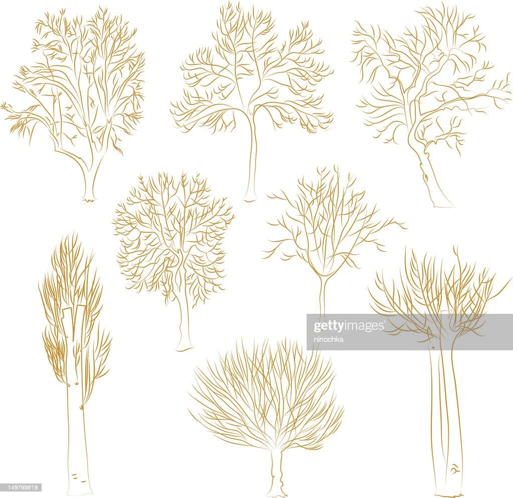 Vector trees : Vektorgrafik