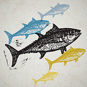 Vector Tuna fishes in abstract composition.