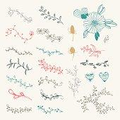 vector vintage hand drawn set of  floral elements and frames