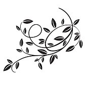 vector vintage spring tree branch with leaves