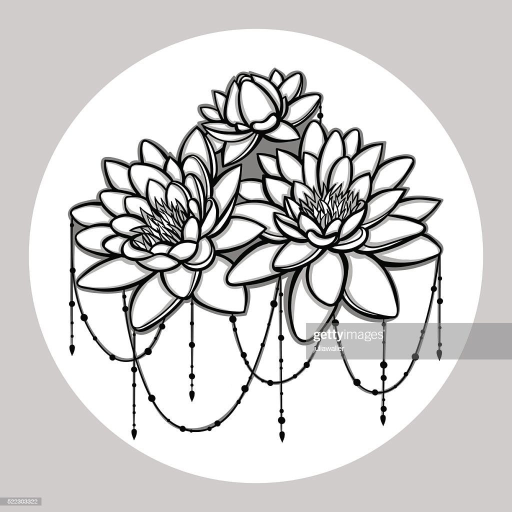 Vector water lily flower handdrawing illustration vector art getty vector water lily flower hand drawing illustration vector art izmirmasajfo