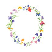 Vector watercolor wreath with colorful summer flowers