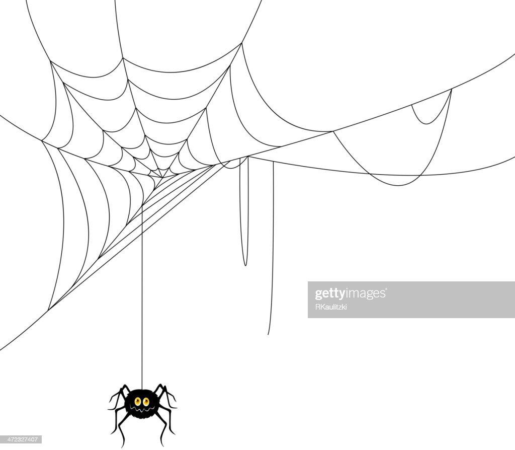Vector Web