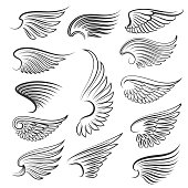 Vector wings isolated on white background