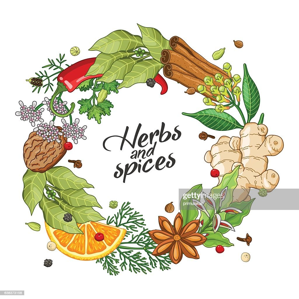 Vector winter circle template with spices, herbs