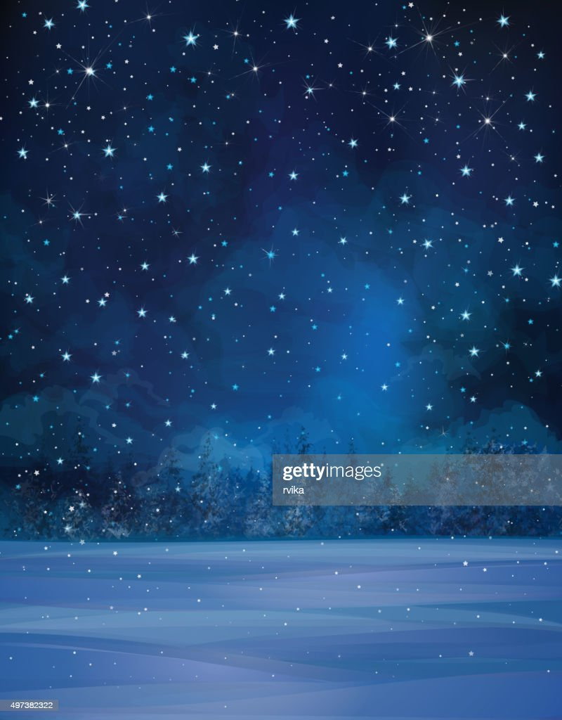 Vector winter night landscape.
