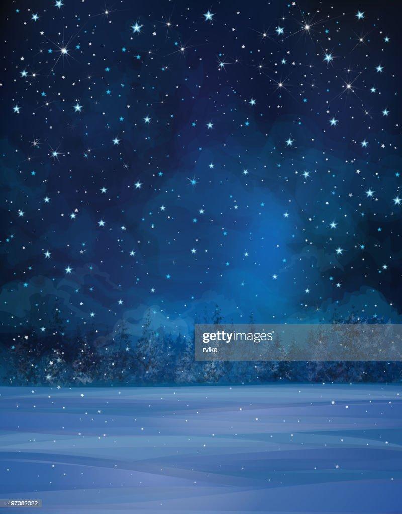 Vector winter night landscape.