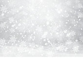 Vector winter, silver snowflakes background.