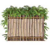 Vector Wooden Fence with Palm