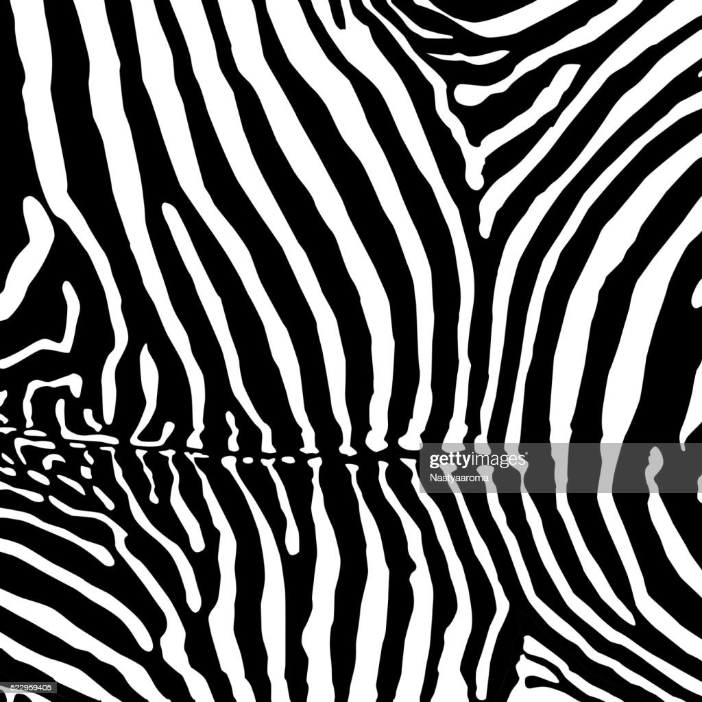 Vector. Zebra background.