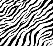 Vector zebra pattern for background