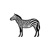 Vector zebra silhouette view side for retro s, emblems, badges, labels template vintage design element. Isolated on white background