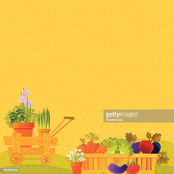 vegetable background - agricultural fair stock illustrations, clip art, cartoons, & icons