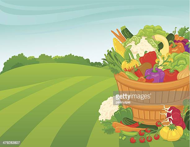 vegetable basket background - marrom stock illustrations
