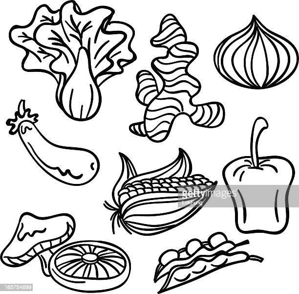 ilustrações, clipart, desenhos animados e ícones de coleção de legumes em preto e branco - bok choy