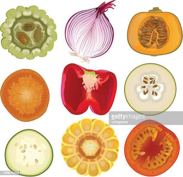 vegetable core - spanish onion stock illustrations
