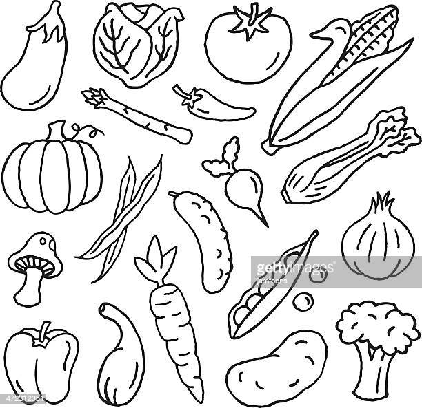 vegetable doodles - bean stock illustrations