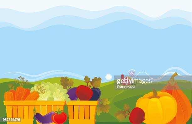 vegetable farm - harvesting stock illustrations