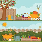 Vegetable garden. Concept of gardening.