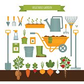 Vegetable garden. Garden tools. Flat style, vector illustration.