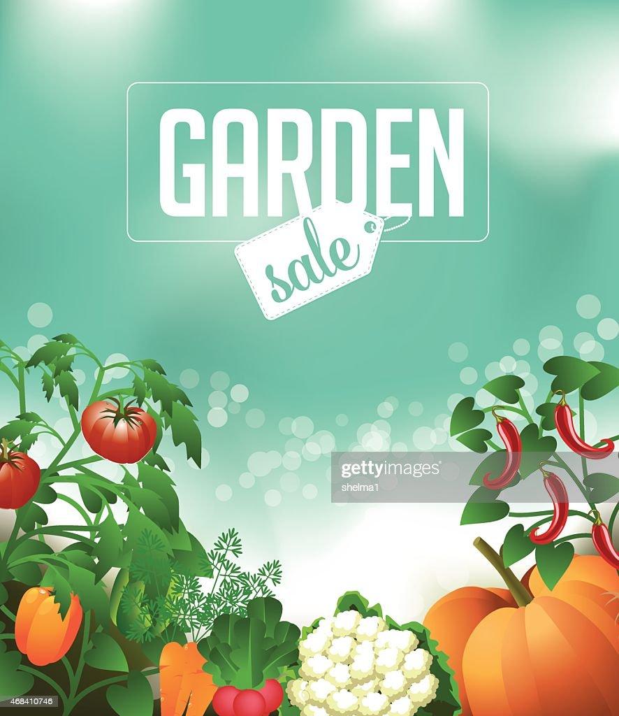 Vegetable garden sale background EPS 10 vector