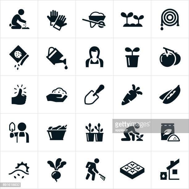 vegetable gardening icons - gardening stock illustrations