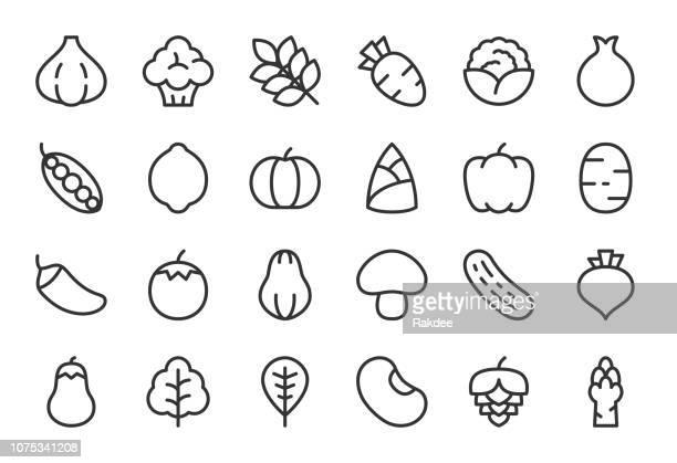 ilustrações, clipart, desenhos animados e ícones de ícones de vegetais - série linha clara - feijão