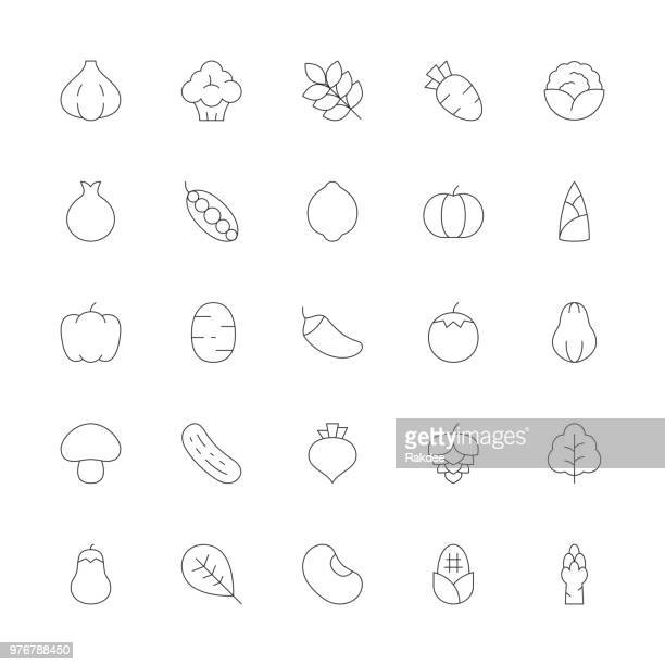 vegetable icons - ultra thin line series - asparagus stock illustrations, clip art, cartoons, & icons